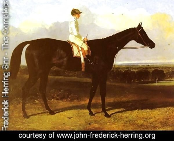 "John Frederick Herring Snr - ""Jonathan Wild"", a drak bay Race Horse, at Goodwood, T. Ryder up"
