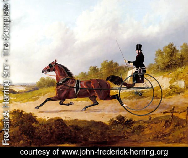 John Frederick Herring Snr - The Famous Trotter Confidence Drawing A Gig