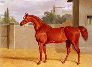 "John Frederick Herring Snr - ""Comus"" A Chestnut Racehorse in a Stable Yard"