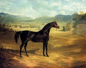 John Frederick Herring Snr - The Bay Stallion Jack Spigot