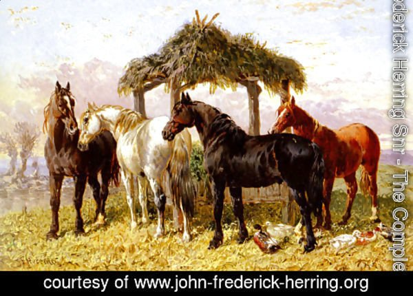 John Frederick Herring Snr - Horses and Ducks by a River