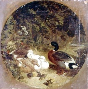 Ducks and Ducklings in a Wooded River Landscape