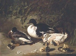 John Frederick Herring Snr - Ducks and Ducklings by a Pond