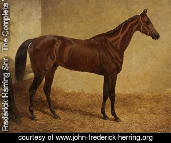 John Frederick Herring Snr - 'Crucifix', Winner of the St Leger