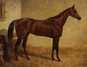 'Crucifix', Winner of the St Leger