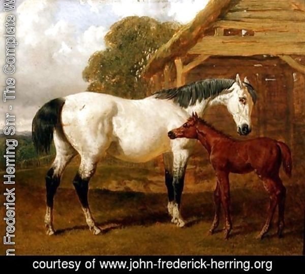 John Frederick Herring Snr - A Mare and Foal before a Barn, 1854
