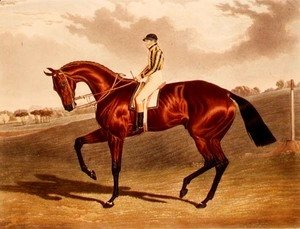John Frederick Herring Snr - 'Bay Middleton' winner of the Derby in 1836