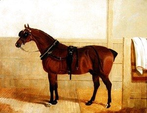 John Frederick Herring Snr - Prize Shire Horse in Harness, 1835