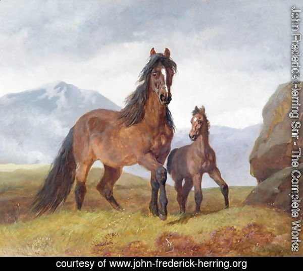 A Welsh Mountain Mare and Foal, 1854