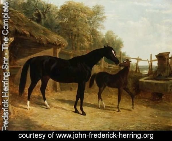 John Frederick Herring Snr - Levity, the property of J.C.Cockerill Esq., with her foal Queen Elizabeth, the property of Lord Dorchester, 1843