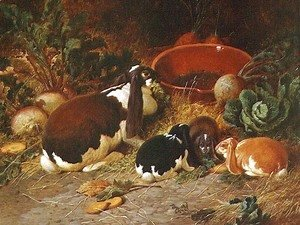 John Frederick Herring Snr - Fancy Rabbits, a Doe with her Young, 1863