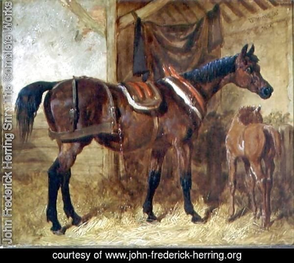 An Old Mare and Foal in a Stable, 1854