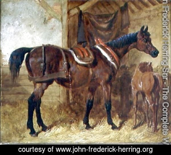 John Frederick Herring Snr - An Old Mare and Foal in a Stable, 1854