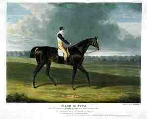 John Frederick Herring Snr - 'Filho da Puta', the Winner of the Great St. Leger at Doncaster, 1815