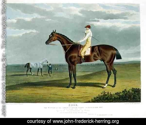 'Ebor', the Winner of the Great St. Leger at Doncaster, 1817