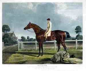 'Reveller', the Winner of the Great St. Leger at Doncaster, 1818