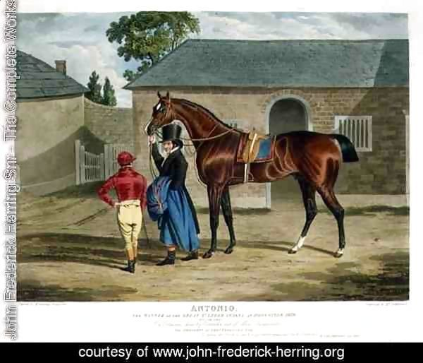 'Antonio', the Winner of the Great St. Leger at Doncaster, 1819