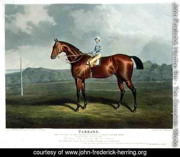'Tarrare', the Winner of the Great St. Leger at Doncaster, 1826