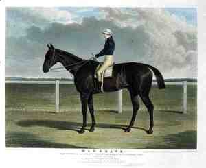 'Margrave', the Winner of the Great St. Leger Stakes at Doncaster, 1832