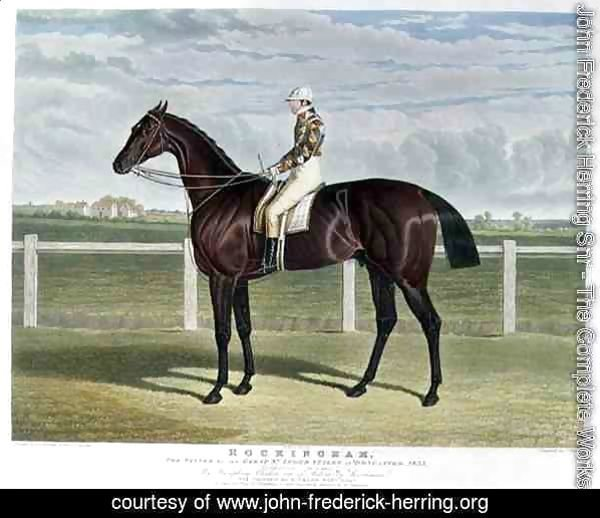 'Rockingham', the Winner of the Great St. Leger Stakes at Doncaster, 1833