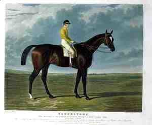 'Touchstone', the Winner of the Great St. Leger Stakes at Doncaster, 1834
