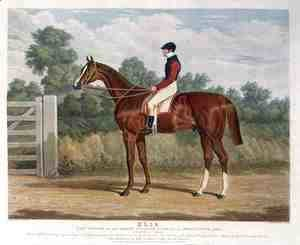 'Elis', the Winner of the Great St. Leger Stakes at Doncaster, 1836