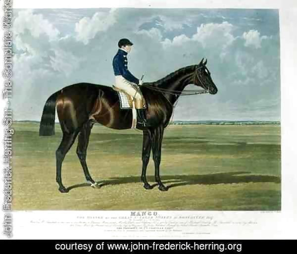 'Mango', the Winner of the Great St. Leger Stakes at Doncaster, 1837