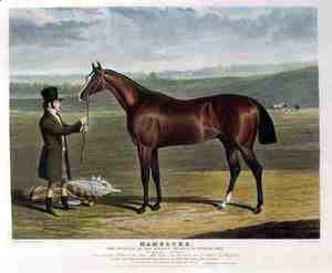 'Mameluke', the Winner of the Derby Stakes at Epsom, 1827