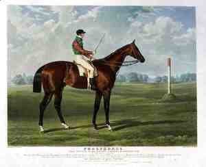 'Phosphorus', the Winner of the Derby Stakes at Epsom, 1837