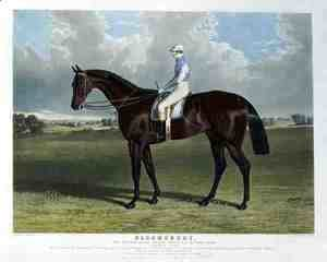 'Bloomsbury', the Winner of the Derby Stakes at Epsom, 1839