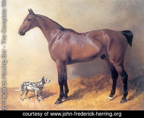 A Bay Hunter and Spotted Dog in a Stable 1846