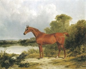 A Chestnut Hunter 1838