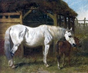 John Frederick Herring Snr - A Grey Mare and Chestnut Foal by a Stable 1853