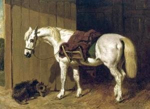 John Frederick Herring Snr - A Grey Pony with a Dog by Stable Door