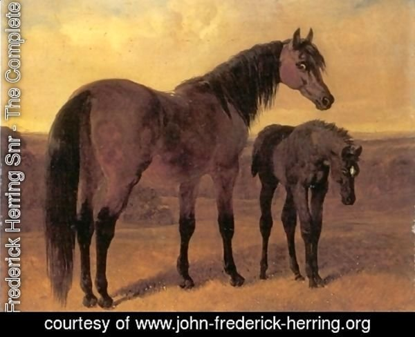 John Frederick Herring Snr - A Mare and Her Foal in a Landscape