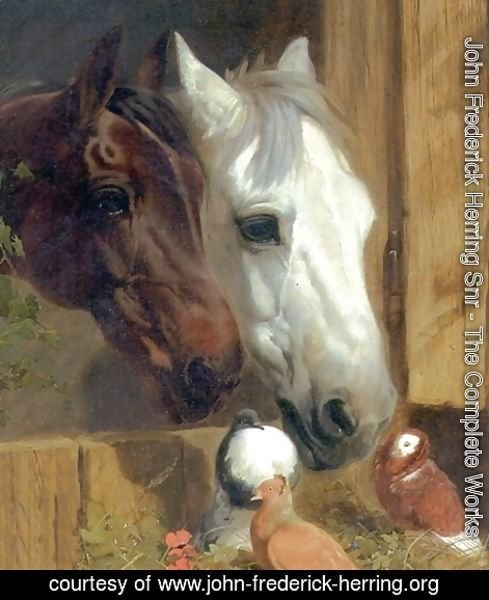 Best of Friends Detail 1847