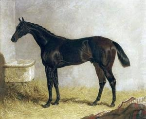 Birmingham in a Stable 1830
