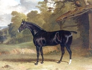 Black Tom a Black Hunter Beside a Stable 1830
