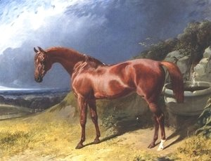 Chestnut A Racehorse