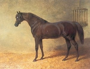John Frederick Herring Snr - Chestnut Colt Gladiator in Stable 1844