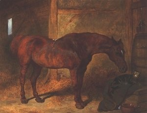 John Frederick Herring Snr - Chestnut Hunter and Cat in Stable