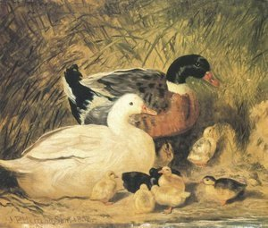 John Frederick Herring Snr - Ducks And Ducklings 2