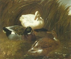 John Frederick Herring Snr - Ducks Beside A Stream 1851