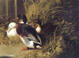 John Frederick Herring Snr - Ducks By A River Bank 1845