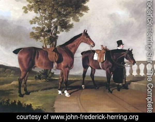 John Frederick Herring Snr - Favorite Hunters Of Lawrence Parsons 1822
