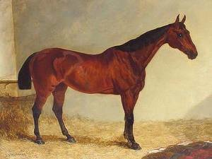 John Frederick Herring Snr - Gypsy, Bay Horse in a Stable