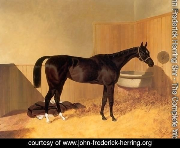 Inheritress a Racehorse 1846