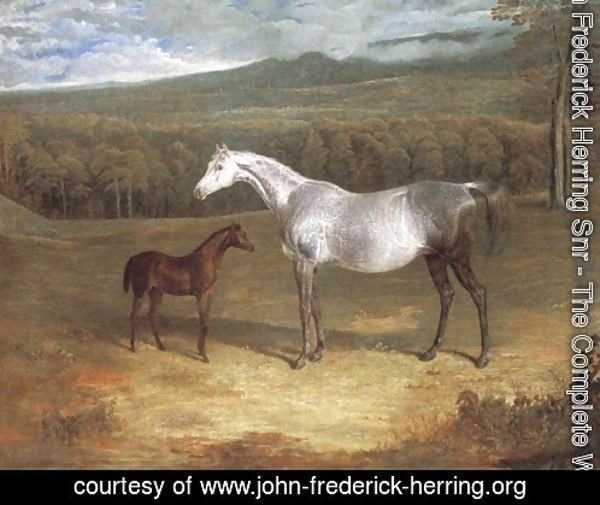 Jack Spigot Foal With Mother 1818
