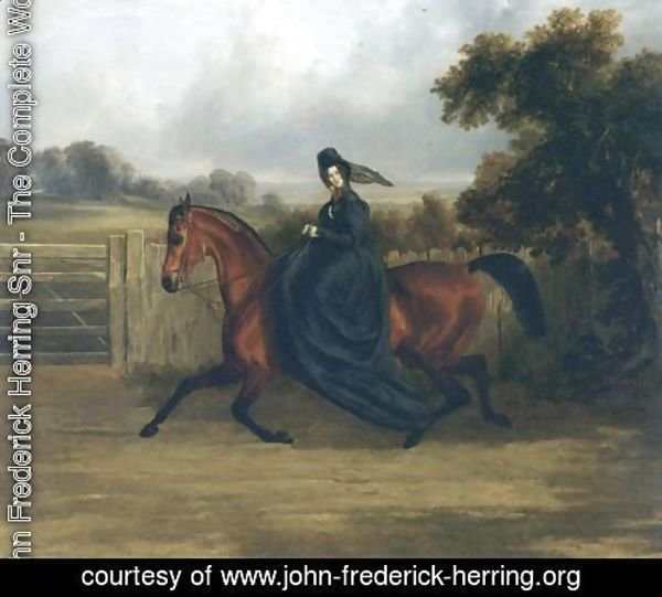 Lady Rush Out Riding Sidesaddle 1843