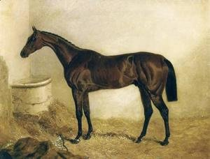 Little Wonder in a Stable 1840